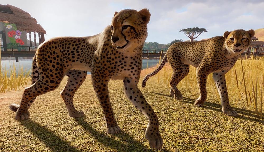 Лучшие игры про животных на ПК – топ 19 красивых и интересных игр