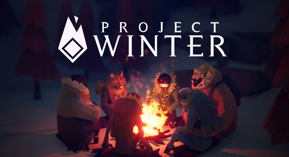 стратегия проект зима